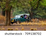 car with wild tiger. holiday in ... | Shutterstock . vector #709138702