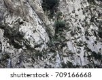 stone mountain park  photo. a... | Shutterstock . vector #709166668