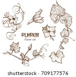 Pumpkin Flower Sketch Hand...