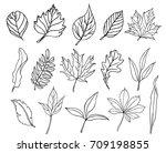 set of hand drawn leaves.... | Shutterstock .eps vector #709198855