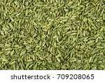 close up fennel seed texture... | Shutterstock . vector #709208065