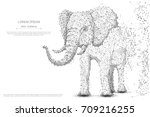 elephant isolated from low poly ... | Shutterstock .eps vector #709216255