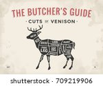 cut of meat set. poster butcher ... | Shutterstock .eps vector #709219906