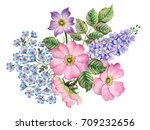 watercolor composition of... | Shutterstock . vector #709232656