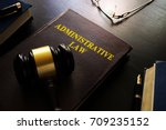 Small photo of Administrative law and gavel on a table.
