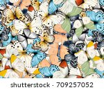 seamless pattern with lot of... | Shutterstock . vector #709257052