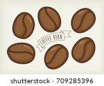 coffee bean vector | Shutterstock .eps vector #709285396
