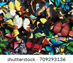 seamless pattern with lot of... | Shutterstock . vector #709293136
