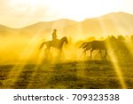 cowboy and horses | Shutterstock . vector #709323538