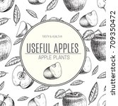 seamless of hand drawn apple.... | Shutterstock .eps vector #709350472