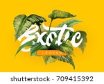 bright tropical background with ... | Shutterstock .eps vector #709415392