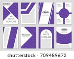 abstract vector layout... | Shutterstock .eps vector #709489672