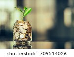 plant growing out of coins with ... | Shutterstock . vector #709514026