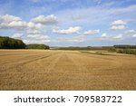 Newly Cut Wheat Field With Tyre ...