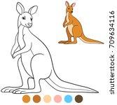 Color Me  Kangaroo. Cute...