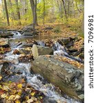 A brook winds through the woods in the Pocono Mountains. - stock photo