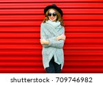 fashion autumn portrait smiling ... | Shutterstock . vector #709746982