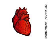 heart. human body. the element... | Shutterstock .eps vector #709945282