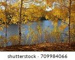 beautiful nature landscape in... | Shutterstock . vector #709984066