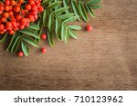 rowan berries on the brown... | Shutterstock . vector #710123962
