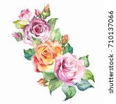 watercolor roses | Shutterstock . vector #710137066