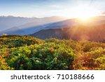 autumn landscape and snow... | Shutterstock . vector #710188666