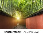 path between red walls... | Shutterstock . vector #710241262