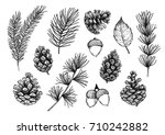 hand drawn vector illustrations ... | Shutterstock .eps vector #710242882
