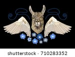 embroidery alpaca  wings and... | Shutterstock .eps vector #710283352