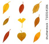 watercolor autumn leaves | Shutterstock . vector #710314186