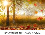beautiful autumn landscape with ... | Shutterstock . vector #710377222