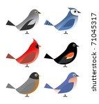 Six Common North American Birds