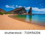 galapagos islands. ecuador....   Shutterstock . vector #710456206