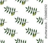 neem  nimtree  medicinal plant. ... | Shutterstock .eps vector #710680252