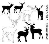 deer silhouette   vector ... | Shutterstock .eps vector #710725228