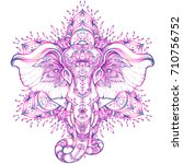 beautiful hand drawn tribal... | Shutterstock .eps vector #710756752