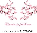 branches with pink flowers.... | Shutterstock . vector #710776546