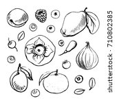 doodle pencil drawn fruits and... | Shutterstock .eps vector #710802385