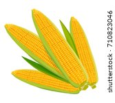 corn isolated on white... | Shutterstock .eps vector #710823046