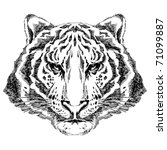 tiger drawing tribal - stock photo