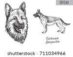 German Shepherd Breed...