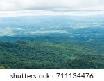 beautiful green forest at view... | Shutterstock . vector #711134476