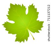 grape leaf on white background... | Shutterstock .eps vector #711137212