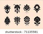 ornamental flowers | Shutterstock .eps vector #71135581