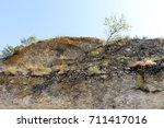 a tree through the rock   Shutterstock . vector #711417016