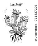 hand draw cactus | Shutterstock .eps vector #711537208