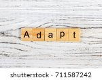 Small photo of ADAPT Word Written In Wooden Cube concept