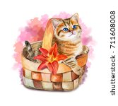 Stock photo cute kitten in a basket watercolor illustration picture template card clip art 711608008