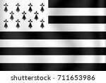 vector flag of brittany ...