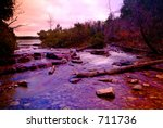 A Forest Creek In The Beautifu...